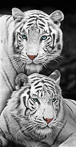 Beach Towel 30 x 60 Inches White Tiger Family Wonder Design Machine Washable