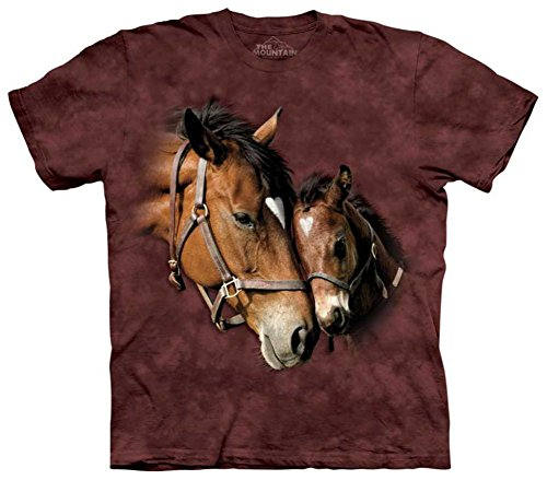 The Mountain Kids Two Hearts T-Shirt, Small, Plum