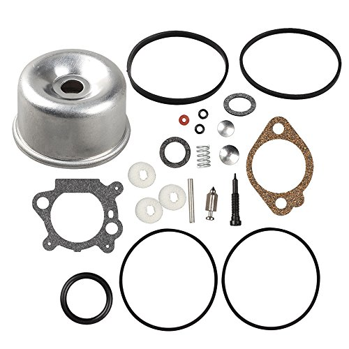 Buckbock 493762 Carburetor Overhaul Kit and Float Bowl for Briggs and Stratton 498260 492495 796611 493640 490937 398183 498261 for 20-141-1 20-141 carb fit for 3.5 4HP Max Series Engine (Briggs & Stratton 498260 Carburetor Overhaul Kit)