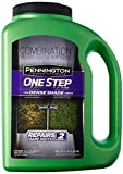 Pennington Seed 5 lb One Step Complete Seeding Mix for Dense Shade