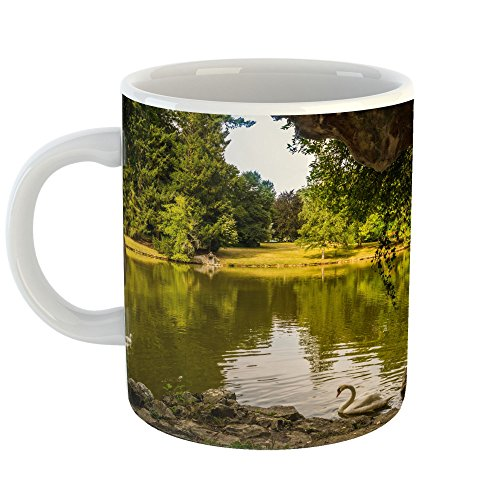 Westlake Art - Nature Water - 11oz Coffee Cup Mug - Modern Picture Photography Artwork Home Office Birthday Gift - 11 Ounce (4455-5D445) - Finest Reserve Port