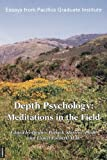 Depth Psychology, Dennis Patrick Slattery, 385630701X