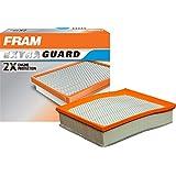 FRAM CA11480 - Filtro de aire para panel de protección adicional