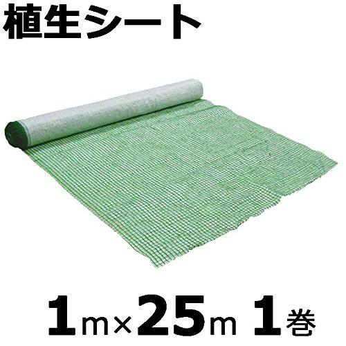 【本州限定販売】 植生シート 1×25m 金目串付き 緑化資材 マット 植生 シート 法面 のり面 新日本緑化 共B代不 B01KYY9AAW