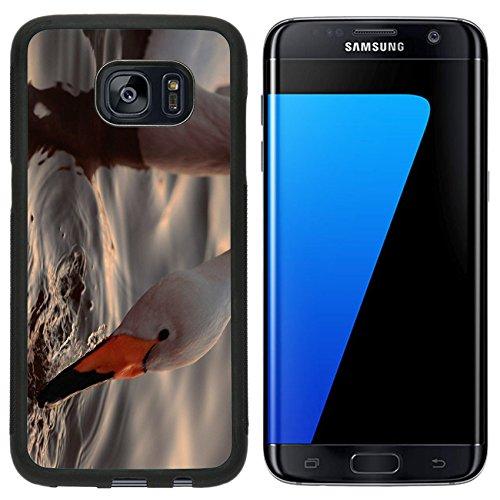 msd-premium-samsung-galaxy-s7-edge-aluminum-backplate-bumper-snap-case-a-closeup-portrait-of-whooper