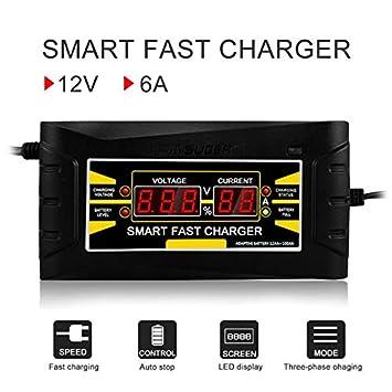 Amazon.com: Cargador de batería de coche automático, 150 V ...