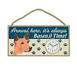 (SJT31204) Around here, it's always Basenji time! 5