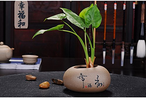 Succulent Planter Pot - Decorative Small Clay Flower - Ceramic Planter Chinese
