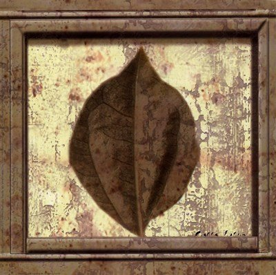 (Classic Leaf Square III by Pierre Fortin - 8x8 Inches - Art Print Poster)