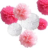 18pcs Tissue Paper Pom-poms, Marrywindix Flower Ball Wedding Party Outdoor Decoration Premium Tissue Paper Pom Pom Flowers Craft Kit (Pink& White)