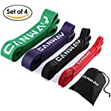 Pull Up Bands - Set of 4 - Resistance Bands - Premium Latex Loop Stretch Workout / Exercise Band - BY CANWAY - Mobility & Powerlifting Assist Bands for Body Fitness Training