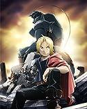 Fullmetal Alchemist Poster Anime Edward Alphonse Japan Wall Art Brotherhood 16x20 Inches