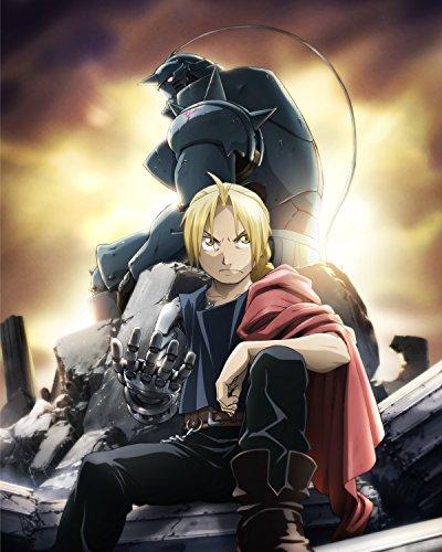 Fullmetal Alchemist Poster Anime Edward Alphonse Japan Wall Art Brotherhood 16x20 - Poster Alchemist