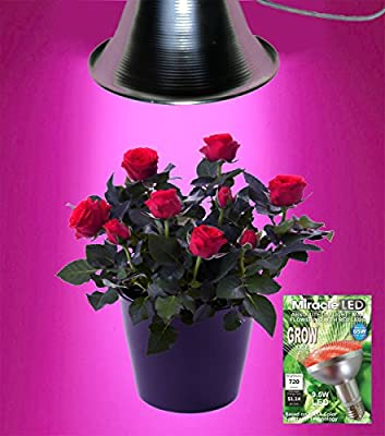 MiracleLED 604966 9.5W Grows for Pennies MAX Flowering Plant LED Grow Light