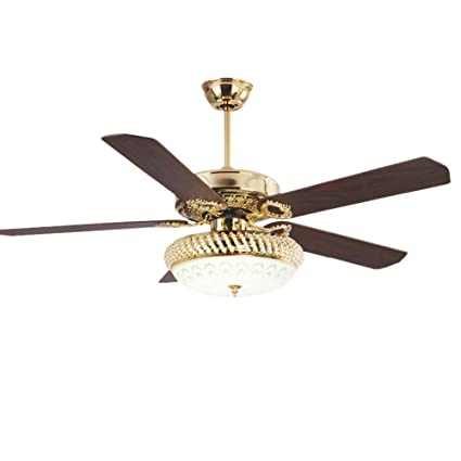 Rainierlight Modern Ceiling Fan Lamp Led 3 Changing Light 5
