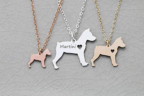 Miniature Pinscher Dog Necklace - IBD - Min Pin - Personalize with Name or Date - Choose Chain Length - Pendant Size Options - 935 Sterling Silver 14K Rose Gold Filled Charm - Ships in 1 Business Day