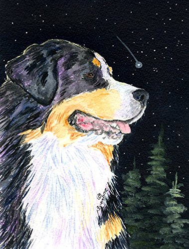 Caroline's Treasures SS8512CHF Starry Night Bernese Mountain Dog Flag Canvas, Large, Multicolor For Sale
