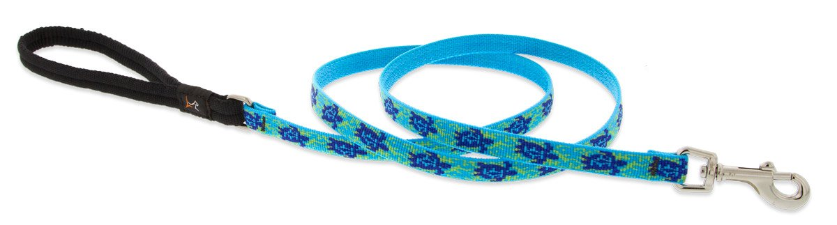LupinePet Originals 1/2'' Turtle Reef 6-foot Padded Handle Leash for Small Pets