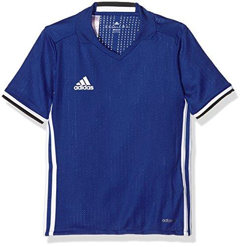 adidas Jungen T-shirt CONDIVO16 Jersey Y, Blau/Weiβ, 152, 4056562829401