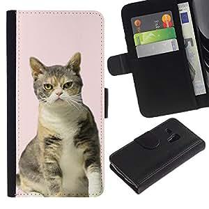 Pink American British Shorthair Curl Cat - la tarjeta de Crédito Slots PU Funda de cuero Monedero caso cubierta de piel Samsung Galaxy S3 MINI 8190