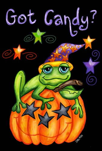 Toland Home Garden Toad Candy 28 x 40 Inch Decorative Colorful Halloween Pumpkin Witch Frog House Flag
