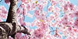 Pink Cherry Blossom - 2ft x 4ft Drop Ceiling Fluorescent Decorative Ceiling Light Cover Skylight Film
