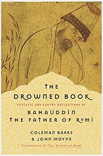 Image result for the drowned book bahauddin