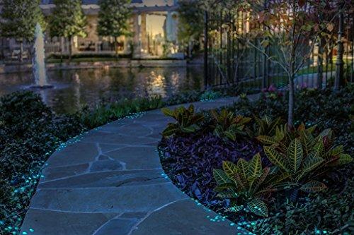 Glow In The Dark Garden Pebbles For Walkways Amp Aquarium Decor And Plants Luminous Stones In Blue