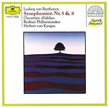 Image result for beethoven symphony 5 DG KARAJAN GALLERIA