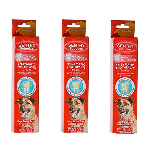 (Enzymatic Toothpaste for Dogs 3 Pack Total of 7.5 oz Poultry Flavor from Petrodex)