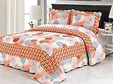 LeLv Pastoral Style Cotton Patchwork Quilt Coverlets Set Reversible Bedspreads Set Pieced Quilt Queen Size 3 Pc (2)