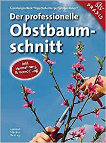 download Leben im Plattenbau: Zur Dynamik sozialer