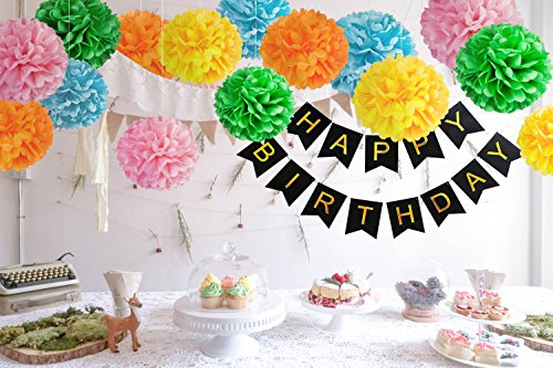 16 DIY Rainbow Birthday Decorations 15 Large Tissue Paper Pom Poms 1 Happy Banner Party Decoration Supplies For Kids Boys And Girls