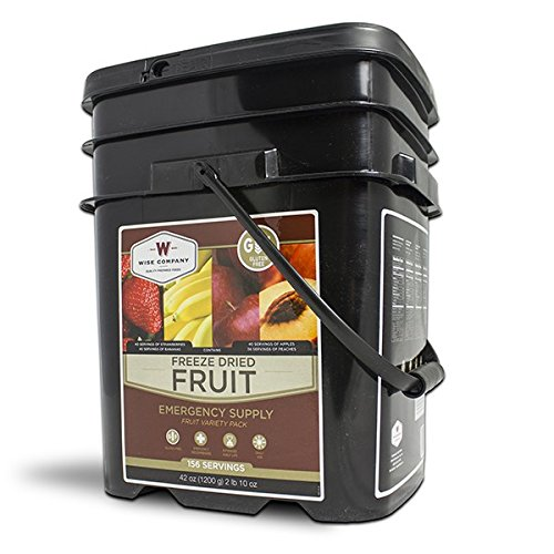 Wise Foods Gluten Free Freeze Dried Fruit 156 Servings by Wise Company