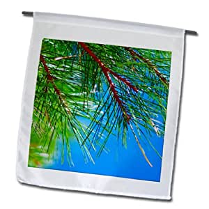 Jos Fauxtographee Trees - A pine tree with a azure blue sky - 18 x 27 inch Garden Flag (fl_98178_2)