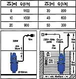Membranpumpe-Wasser-300-Watt-Typ-79942