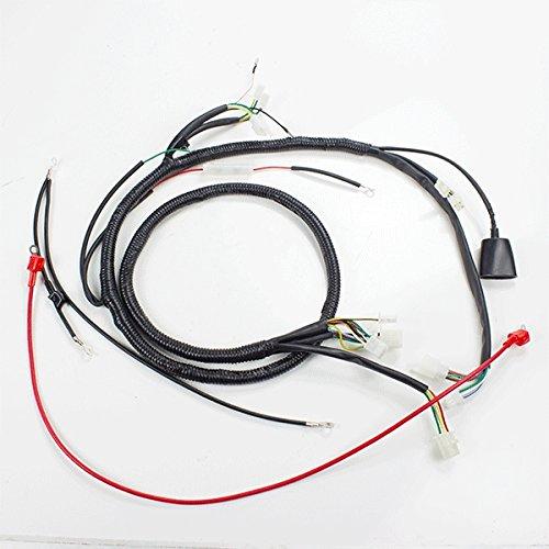 Wiring Loom (WRLM099):
