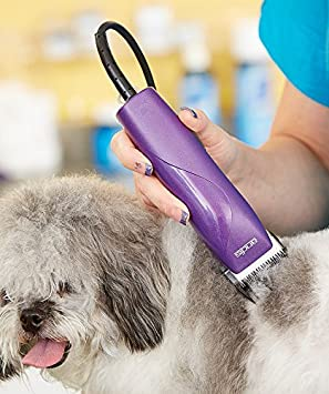 Amazon.com  Andis EasyClip 8 Piece Dog Grooming Clipper Kit eca4257fc28