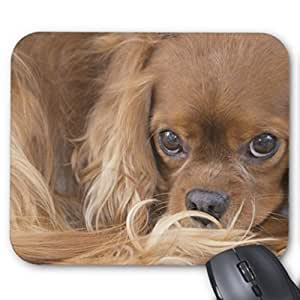 Personalized Design Cute Dog Mouse Pad Anti Slip Gaming Mouse Pad Durable Office Accessory And Gift