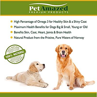 PetAmazed Best Salmon Fish Oil for Dogs ☆ 100% Natural Food Grade Liquid Dog Nutritional Supplement ☆ Pure Premium Norwegian Salmon Oil ☆ Promotes Coat, Joint and Brain Health ☆ Satisfaction Guarantee