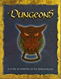 img - for Dungeons: A Guide to Survival in the Realms Below by Nancy Berman (2002-07-01) book / textbook / text book
