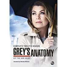 Grey's Anatomy: The Complete Twelfth Season