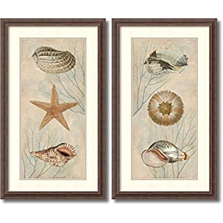 Amanti Art Framed Wall Art Print | Home Wall Decor Art Prints | Ocean Companions - Set of 2 by Deborah Devellier | Rustic Decor (B00WIP0KBY) | Amazon price tracker / tracking, Amazon price history charts, Amazon price watches, Amazon price drop alerts