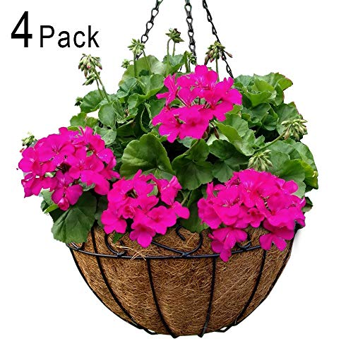 - Metal Hanging Planter Basket with Coco Coir Liner 12 Inch Round Wire Plant Holder with Chain Porch Decor Flower Pots Hanger Garden Decoration Indoor Outdoor Watering Hanging Baskets