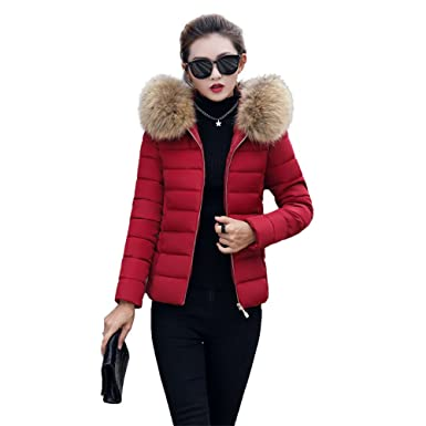 buy online cab12 b269b BAINASIQI Damen Daunenjacke Elegant Winter kurz Jacke Parka Steppjacke  Einfarbig Kapuzenjacke Slim Hooded Outerwear Übergangsjacke