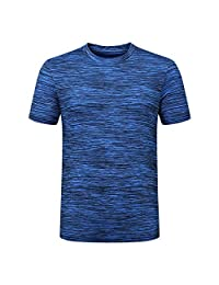 Coupondeal Men's Summer Casual O-Neck T-shirt Fitness Sport Fast-Dry Breathable Top Blouse(Blue,XXXL)