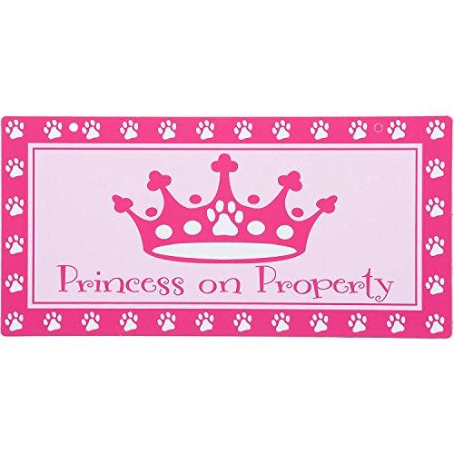 Hillman Sign Center -- Princess on Property, 10