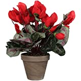 Mica Decorations 947226??Flowers Cyclamen Red by Mica Decorations