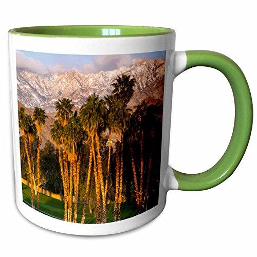3dRose Danita Delimont - Richard Duval - Golf club - USA, California, Palm Springs. Desert Island Golf and Country Club. - 11oz Two-Tone Green Mug - Outlets Desert Palm Springs