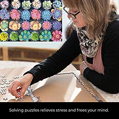 Succulent Garden 1000 Piece Double Sided Jigsaw Puzzle for Adults and Families, Fun Family Puzzle with Plants and Succulent Theme (75X50cm): Arts, Crafts & Sewing